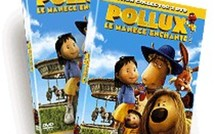 Pollux revient... En DVD et Collector !
